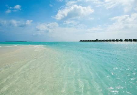 Фото отеля LUX* South Ari Atoll 5*